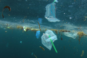 Plastic Straw in Ocean